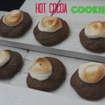 the one with hot cocoa cookies